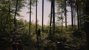 Pozdrav iz slobodnih šuma