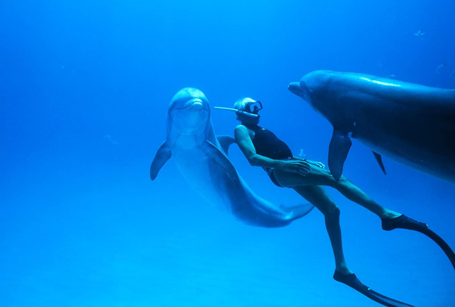 Čovjek delfin